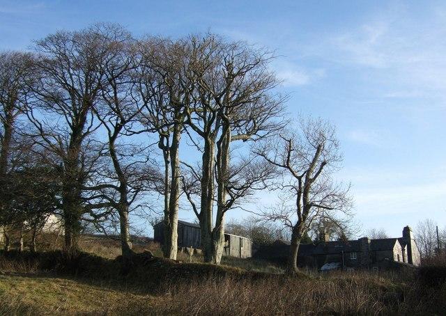 Trenhorne Farm