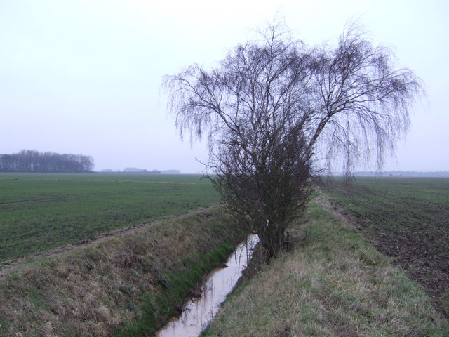 Drain on the Wrawby Carrs