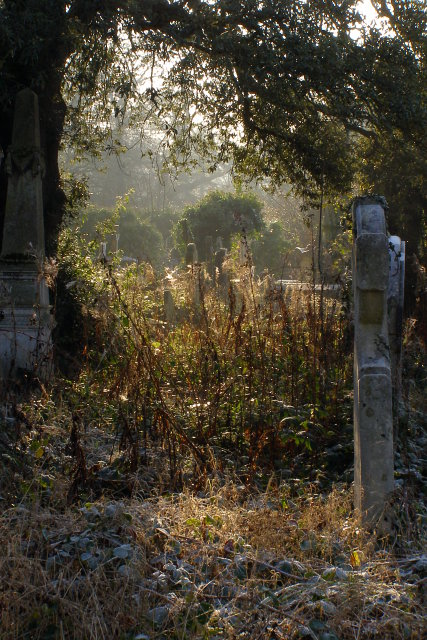 Southern edge of Southampton Old Cemetery