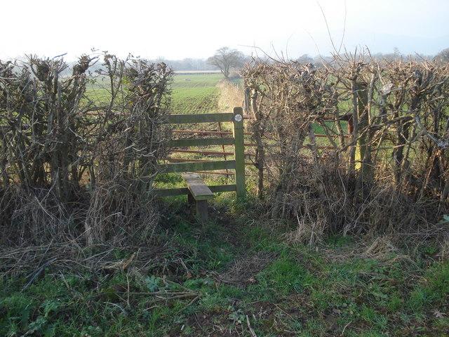Footpath junction near Tickeridge Farm