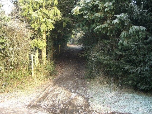 Bridleway from Hornbrook bridge to Brambling Close