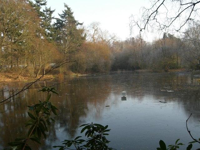 Dry pond