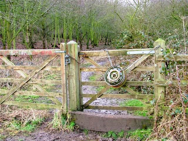 Public Footpath Along the Edge of Trent Meadows