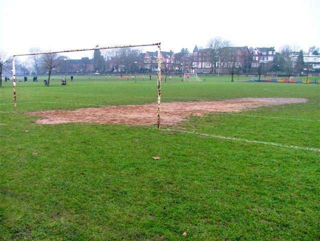 Goal Posts, Forest