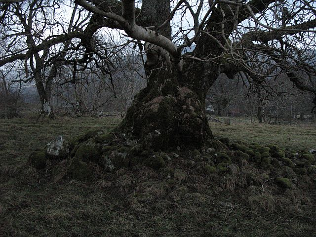 Ash and clearance cairn