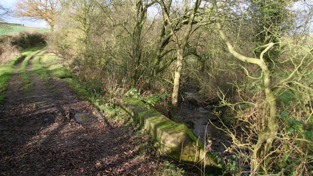 Bridge over Westwood Brook