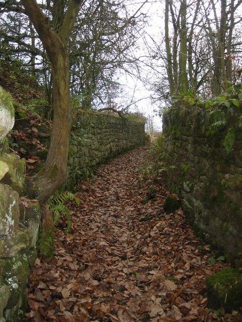 Quaker Gate