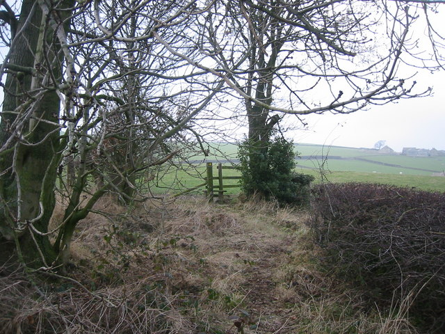 Footpath Junction, Booth Lane