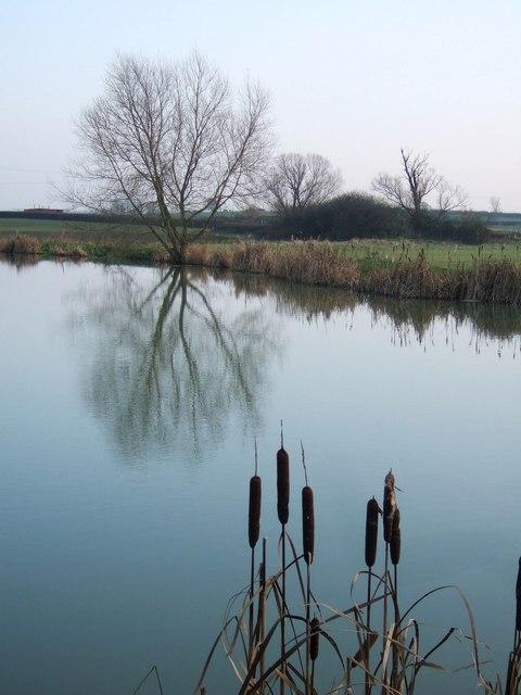 Ash Lakes