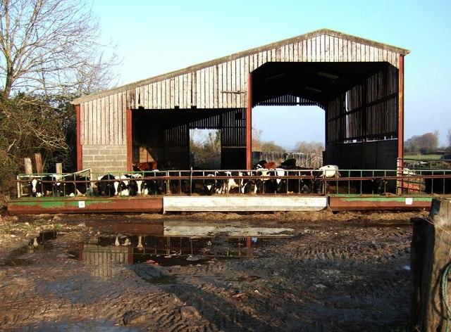 Barn near Witcombe
