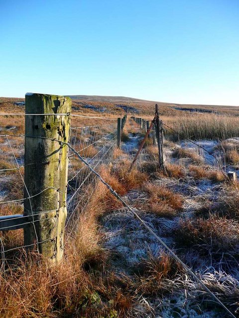 Frosty morning on Dog Hillock
