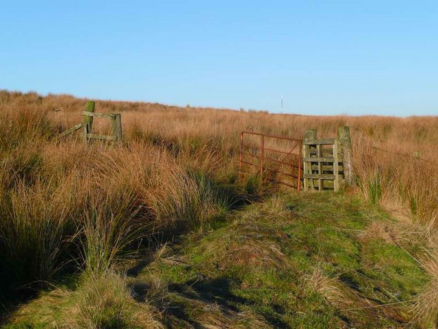 Old gate on the track towards Muirhead