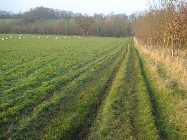 Footpath near Stable Farm
