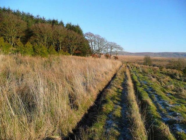 The track towards Muirhead