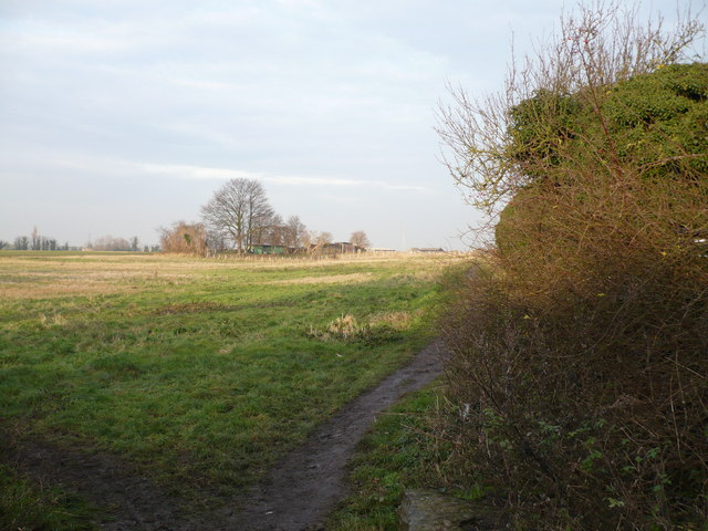 Footpath to Ham Marshes