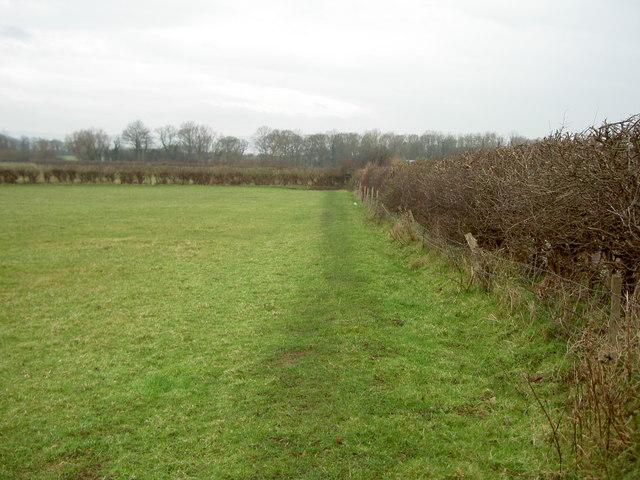 Footpath near Thurstaston