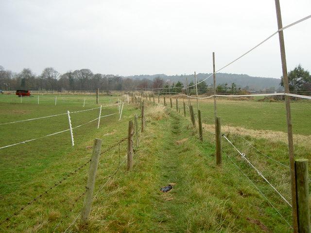 Footpath near Caldy