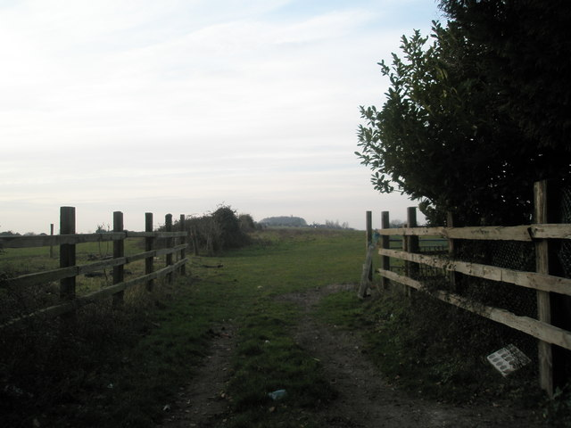 Looking westwards from Towers Farm