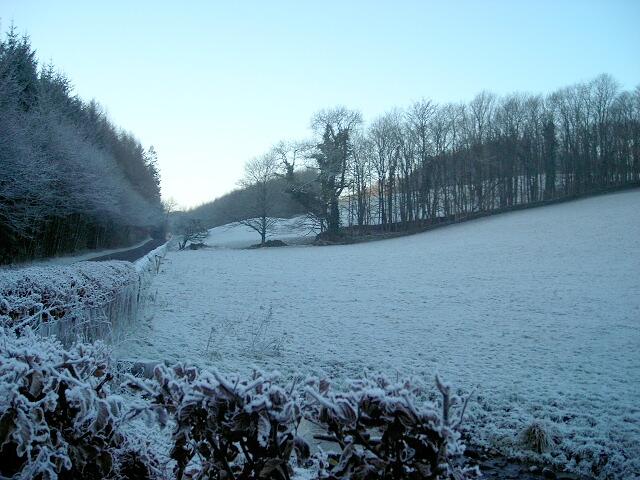 Frosty Hillside Near Riddingshill