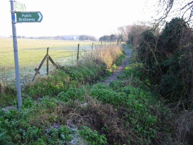 Looking E along bridleway to Ham