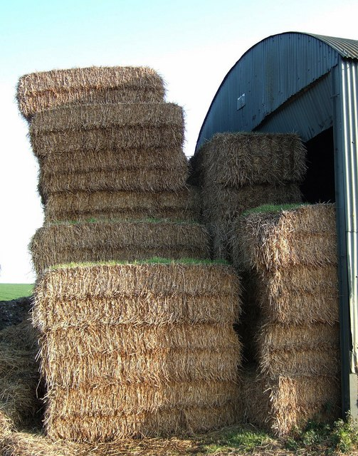 Teetering straw stacks