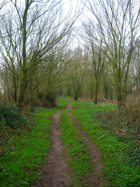 Footpath near The Mill