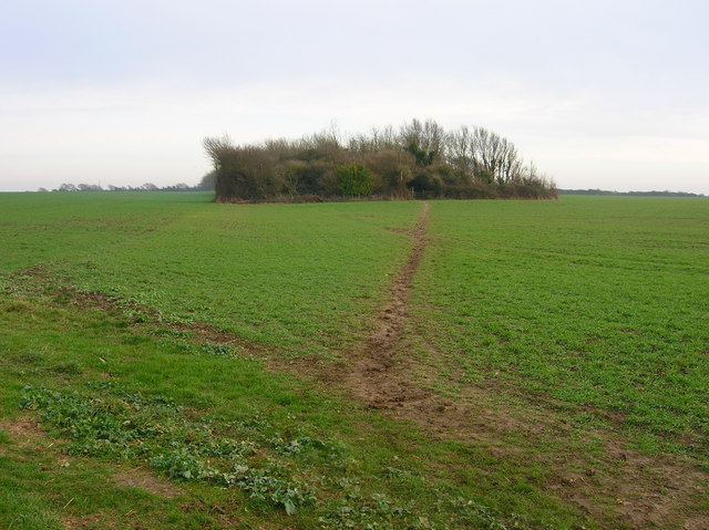 Footpath to The Mill