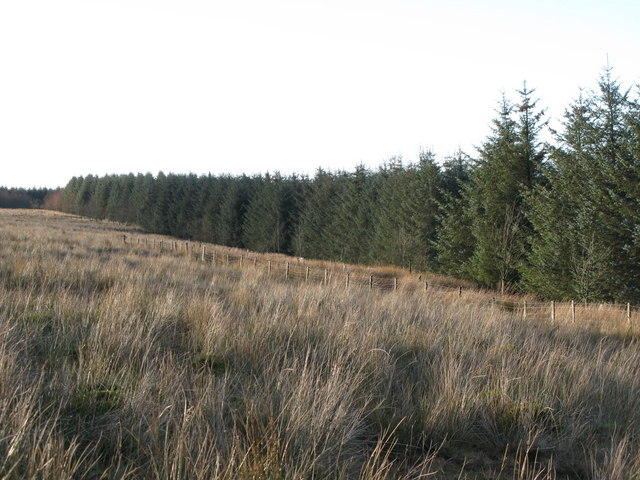 The plantation on Dry Rigg