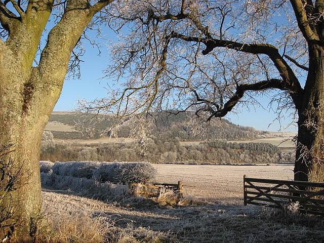 December farmland