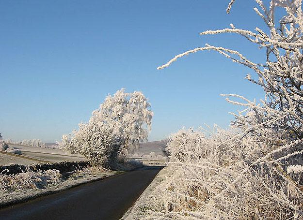 The Hollybush Road in December