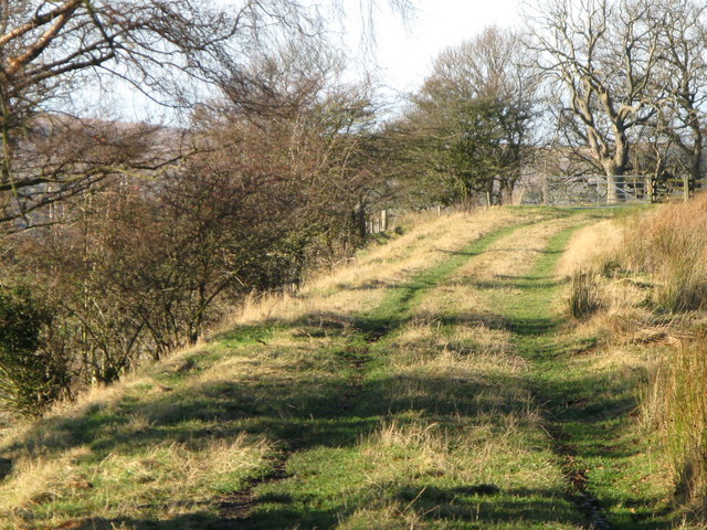 The trackbed of the former Hexham to Allendale railway line (2)