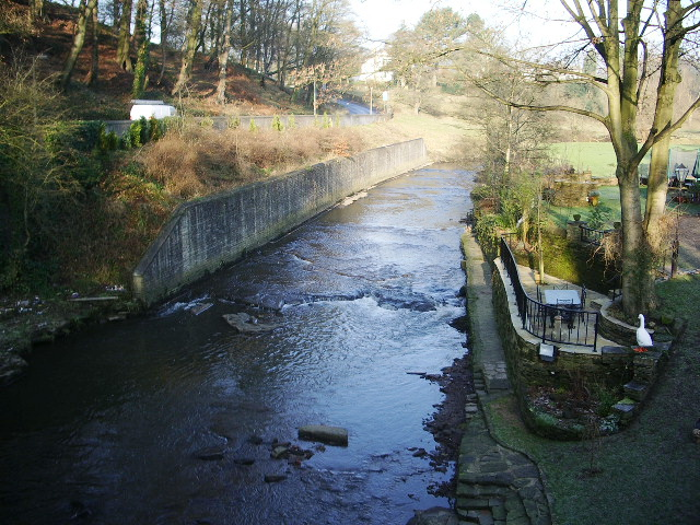 River Darwen, Feniscowles