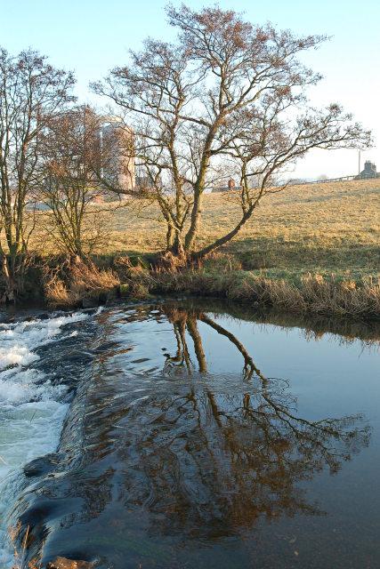 Weir on the Eden
