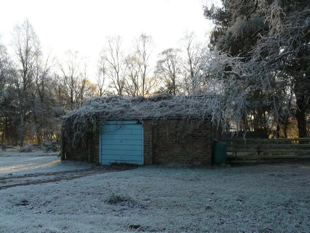 """""""Green"""" roof garage, by Loch Eye"""