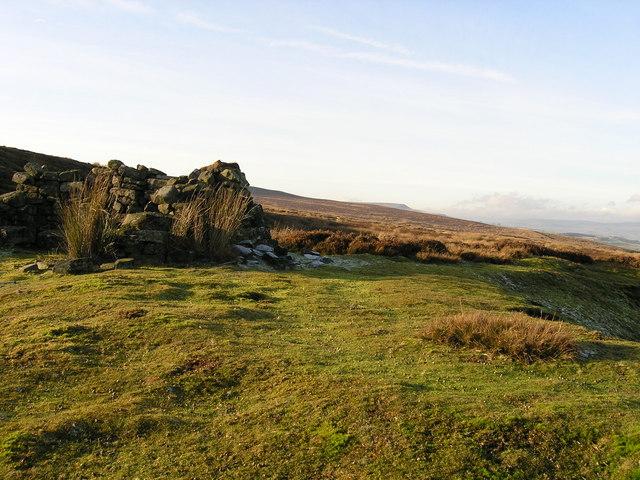 Grouse butt on Braithwaite Moor