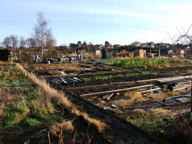 Hoole Allotments, Chester