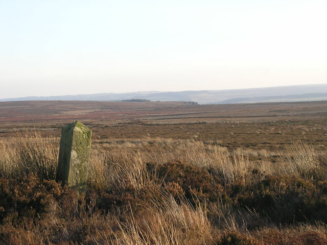 Boundary stone on Brown Rigg
