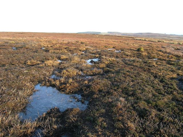Frozen tarnlets on Brown Rigg moor