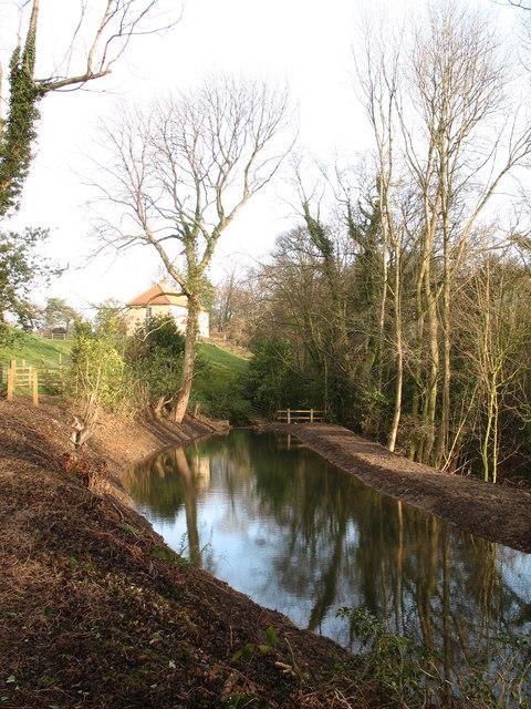 Restored Pond, Hackfall Woods