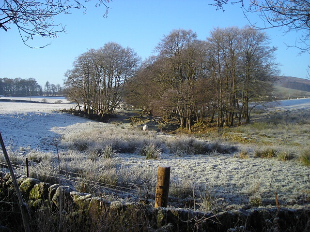 Fields to the North of Midrig on a Frosty Day