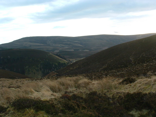 Looking into Glen Fiddich