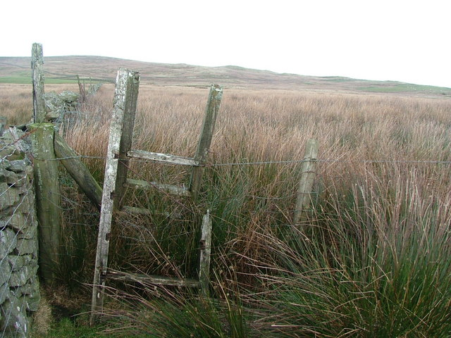 A stile for the brave