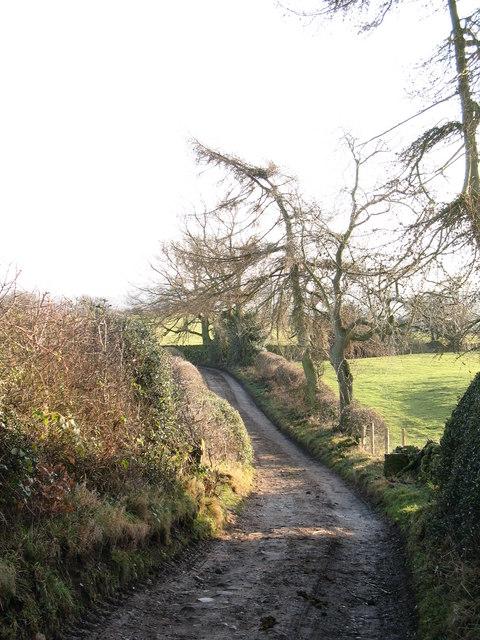 Unmade lane at Bramley Grange