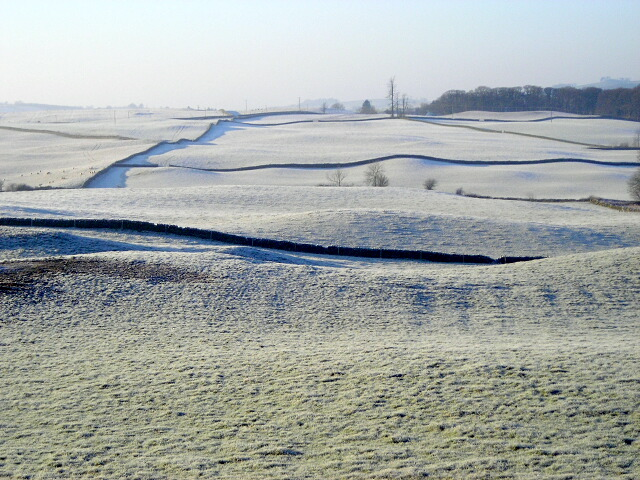 Frosty Fields at Knockshinnoch