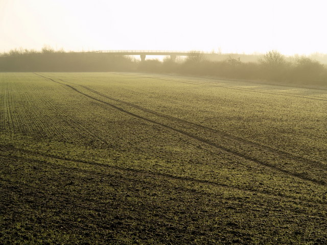 A Frosty Field south of Hedon