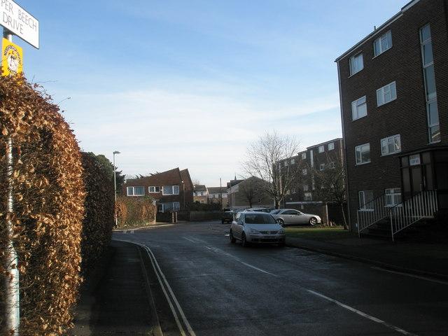 Housing in Copper Beech Drive