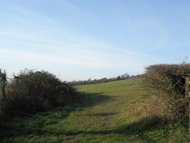 Field by Farlington Waterworks