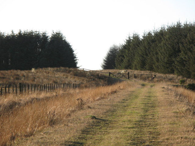 Track by the plantation on Dry Rigg