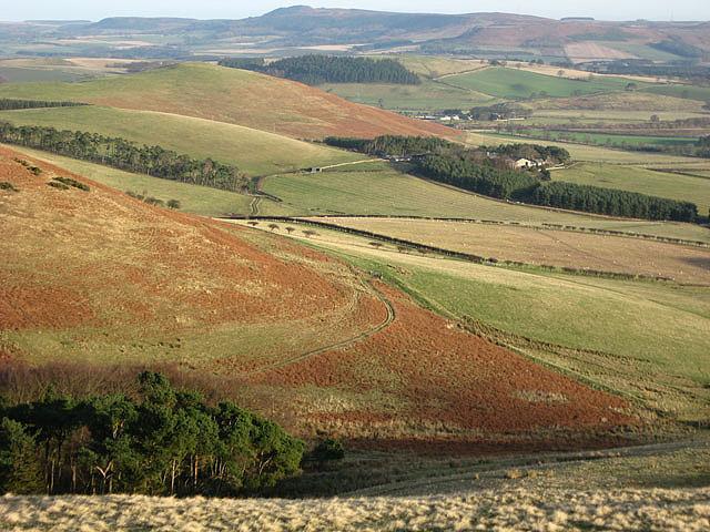 Farmland at West Hill