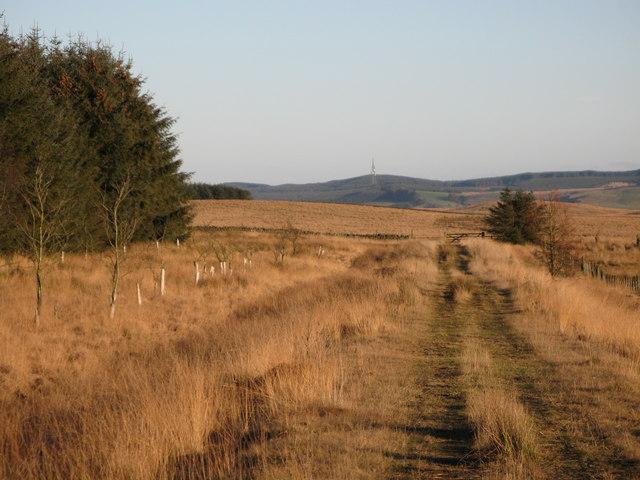Towards Watch Hill